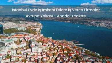 İstanbul Evlere İş Veren Firmalar Evde İş İmkanı 2019