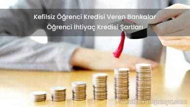 Kefilsiz Öğrenci Kredisi Veren Bankalar 2019