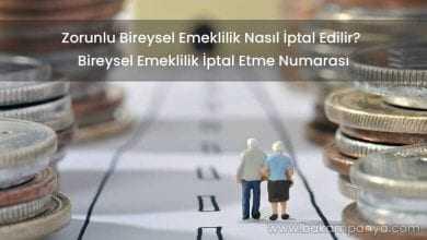 Zorunlu Bireysel Emeklilik Nasıl İptal Edilir? (İPTAL NUMARASI)