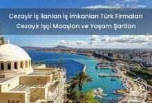 Cezayir İş İlanları İş İmkanları Türk Firmaları 2019